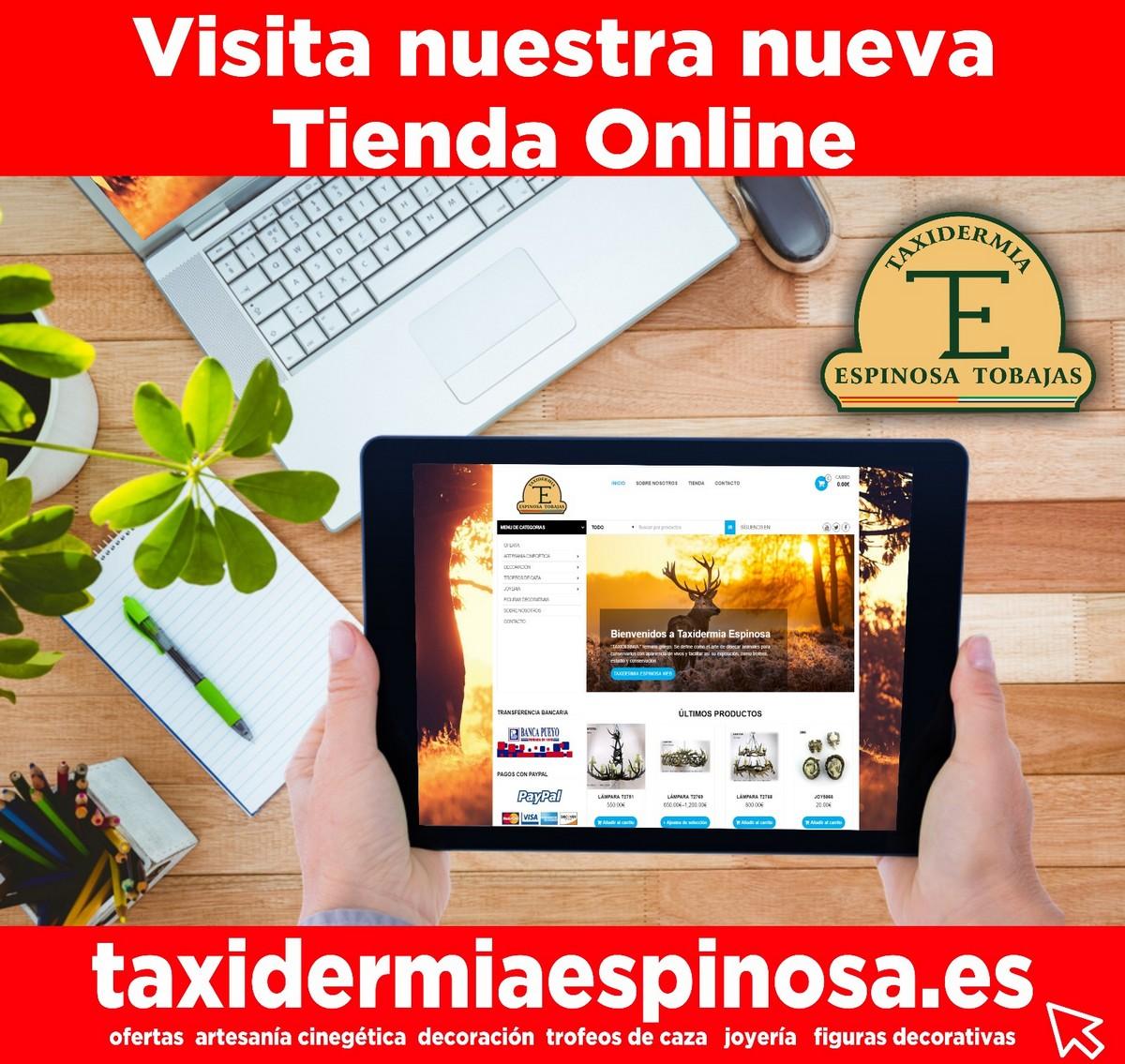 tienda-online-taxi